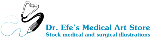 Dr. Efe's Medical Art Store: Medical Illustrations and Surgical Art